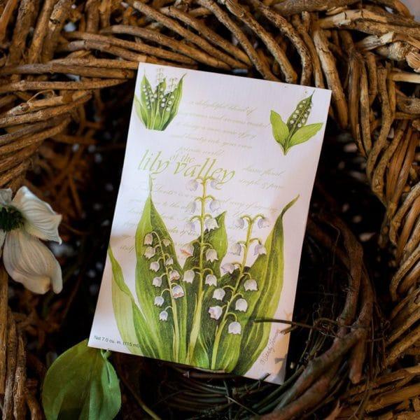Fresh Scents Lily Of The Valley - Buste Profumate Grandi Per Armadi - Candlestore.eu
