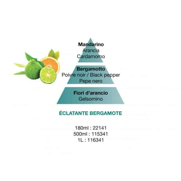 Lampe Berger - Bergamotto Raggiante (Eclatante Bergamothe) Flacone 500 ml - Candlestore.eu