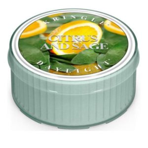 Citrus & Sage - Candele Daylight Kringle Candle - Candlestore.eu