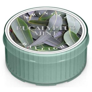 Eucalyptus Mint - Candele Daylight Kringle Candle - Candlestore.eu