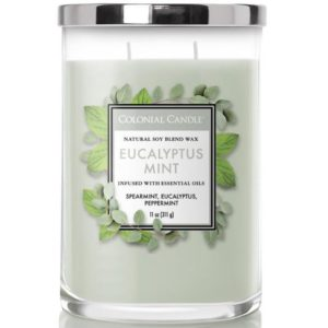 Colonial Candle Eucalyptus Mint - Candela Profumata Media 311gr 2 Stoppini Classic Cilinder - Candle Store